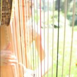playing thru harp strings